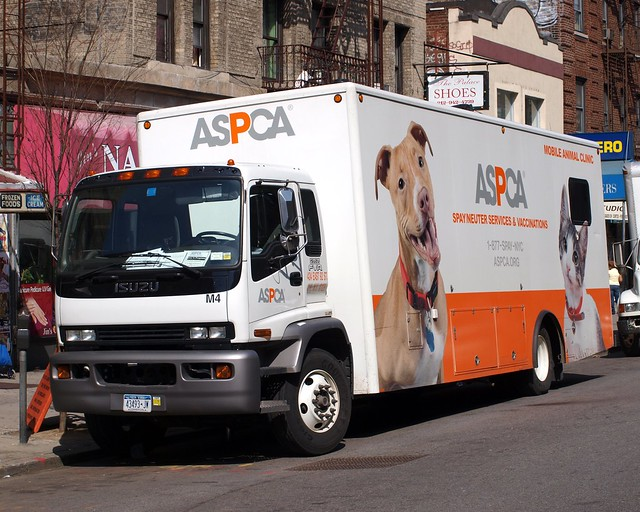 Aspca Mobile Clinic In Staten Island