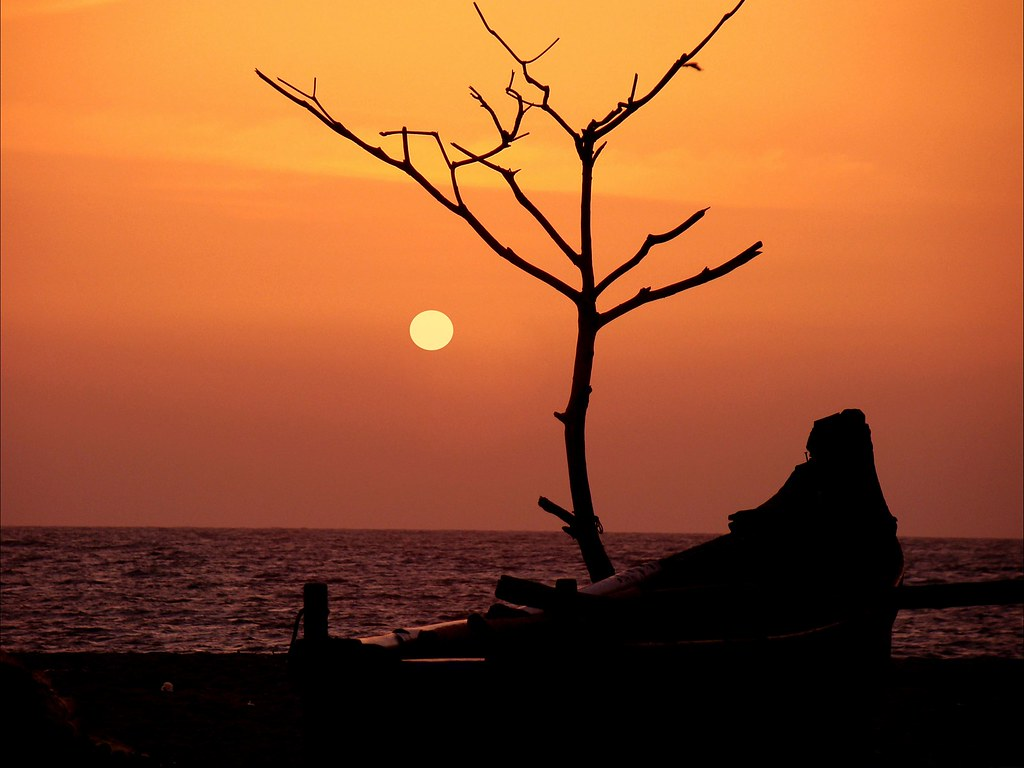Calicut beach -Serene