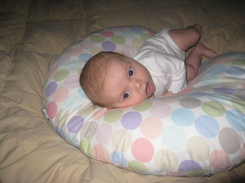Lilah - 7 weeks