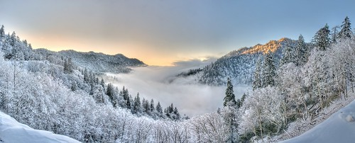 trees winter panorama snow mountains ice fog view tennessee smoke