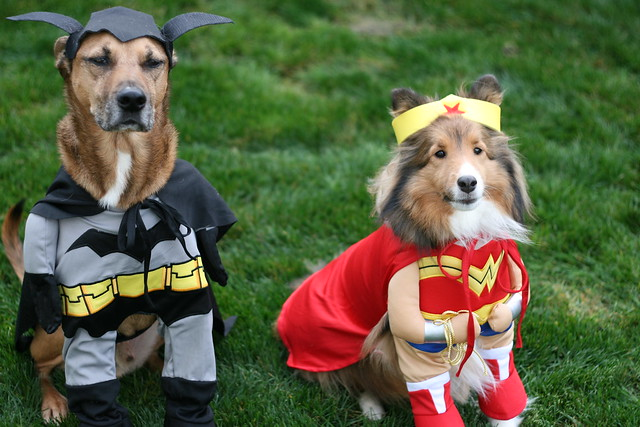 batman and wonder woman