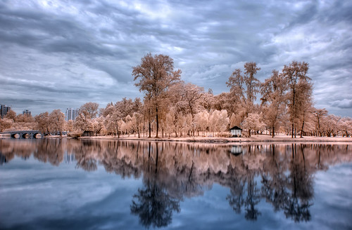 IR reflections