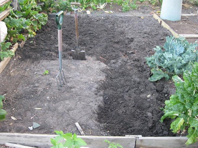 Community garden soil preparation flickr photo sharing for Preparation of soil