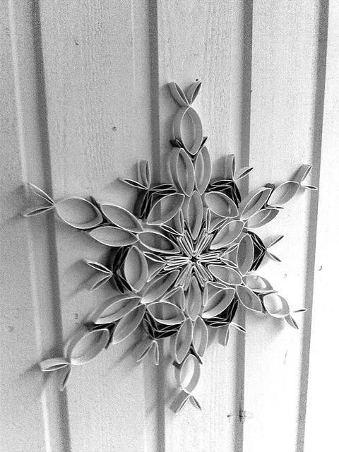 Snowflake made of toilet paper rolls flickr photo sharing - Deco rouleau de papier toilette ...