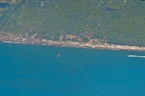 Hout Bay