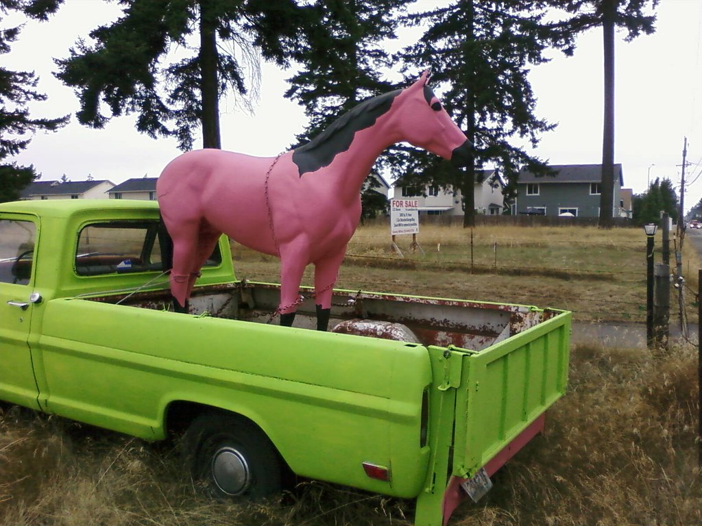 Pink Pony in Spanaway