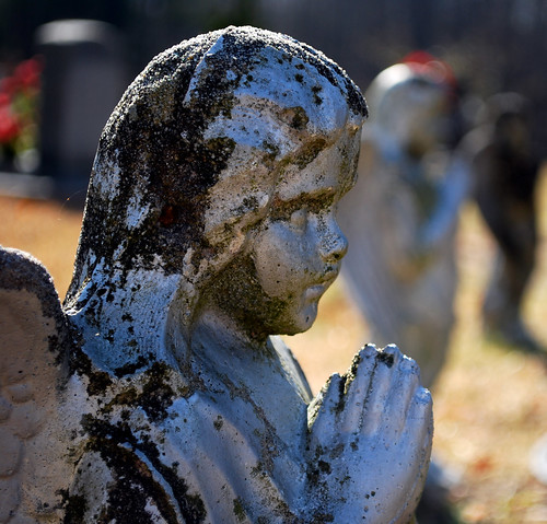 cemetery statue angel jones moss nikon south praying southcarolina graves carolina willie guardian guarding 2010 d60 onceaday nikond60 365project willieleejones twothousandandten 3652010