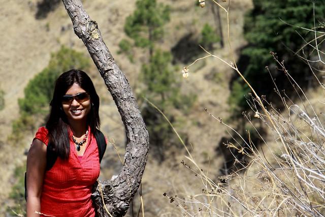 kasauli hills gilbert's trail