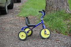 kick scooter(0.0), training wheels(0.0), bmx bike(0.0), bicycle(0.0), wheel(1.0), vehicle(1.0), cycle sport(1.0), lawn(1.0), land vehicle(1.0), tricycle(1.0),
