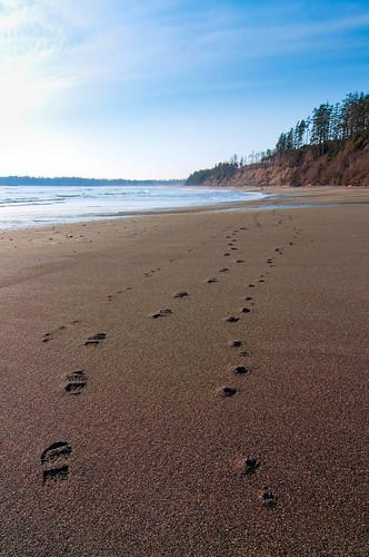pebble beach ca