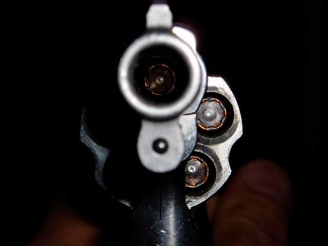Se o PL vier a ser aprovado, as perspectivas de sobrevivência passarão a depender do preço das balas e da pontaria dos ''esportistas'' - Créditos: Reprodução/Internet