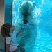 Bo and the Polar Bear by jornt.