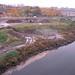 Bronx Kill Randall's Island Discharge
