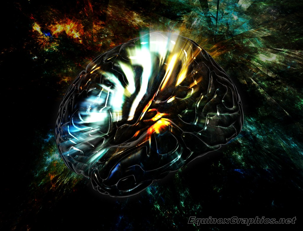 Image:Brain Activity / Consciousness