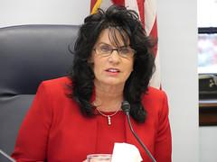 Rep. Cathy Tilton - House Minority Press Availability - Feb. 23, 2017