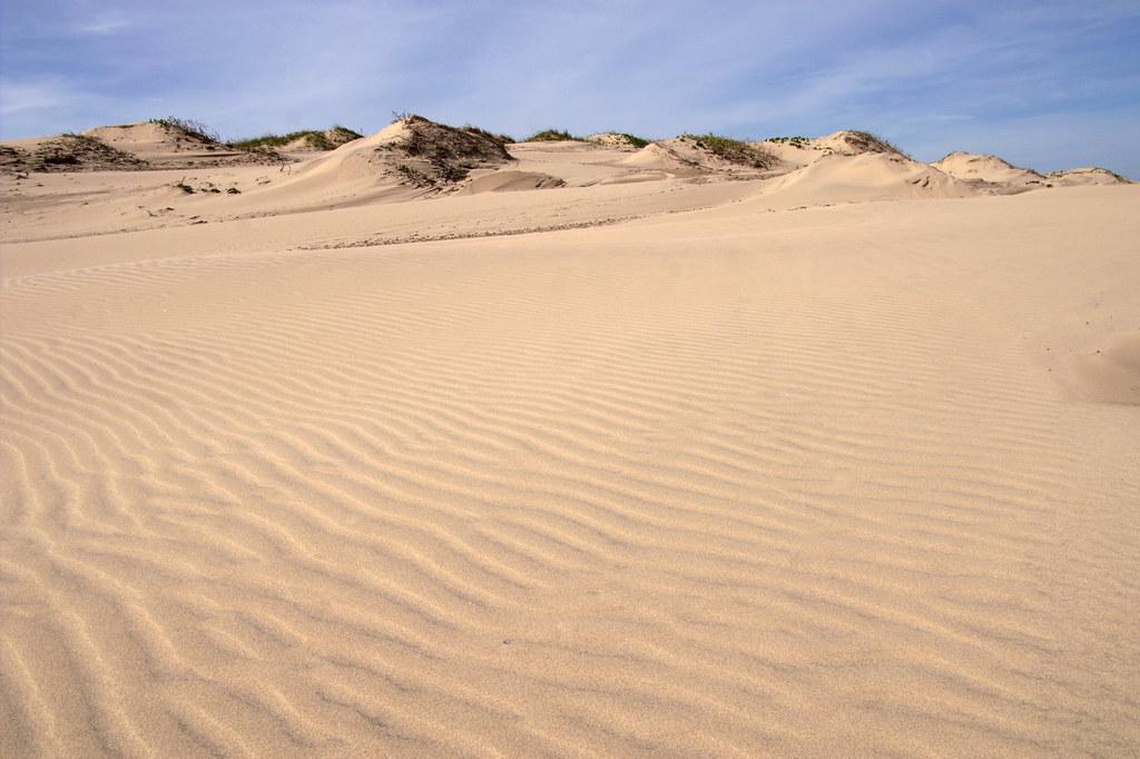 Texas Sand Dunes | Sou...