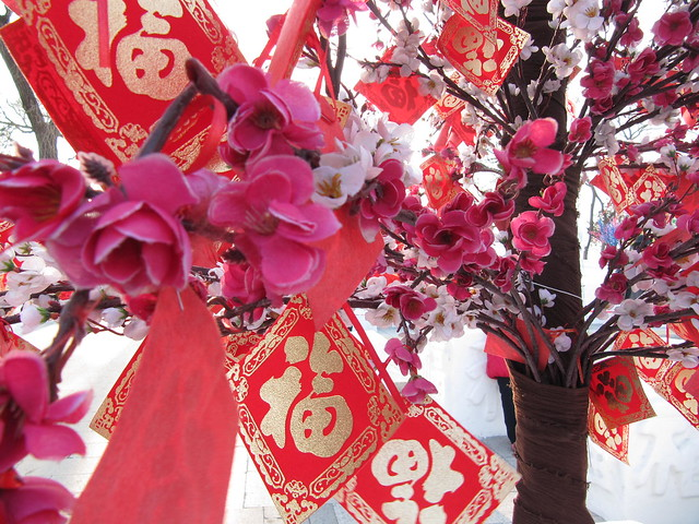 Red and Gold Cards on Cherry Blossom Tree China