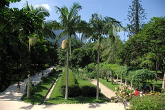 You are Gladly Welcome in the City's World Famous Garden Jardim Botanico - Things to do in Rio de Janeiro