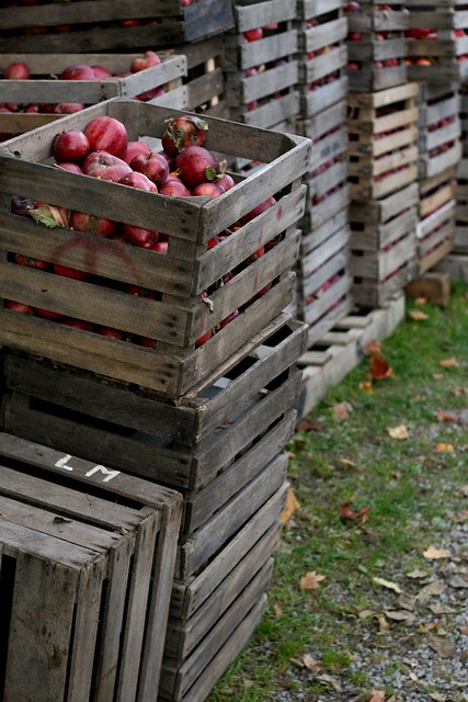 Crates of apples flickr photo sharing for How to make apple crates
