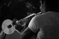 musician, trumpet, musical instrument, music, trumpeter, monochrome photography, jazz, entertainment, monochrome, brass instrument, black-and-white, black,
