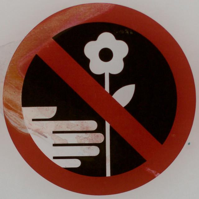 no picking flowers squared circle flickr photo sharing