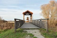 Die Brücke von Andau, 29.11.2009