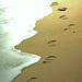 where does these footsteps lead to  ? by VinothChandar