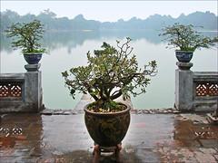 Le lac Hoan Kiem (Hanoi)