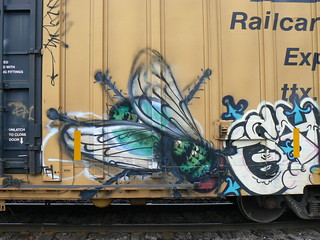 fly_on_freight by rebuker