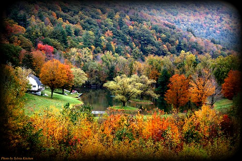 autumn trees friends reflection fall colors ulstercounty thecatskills