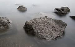 wallpaper - wet stone