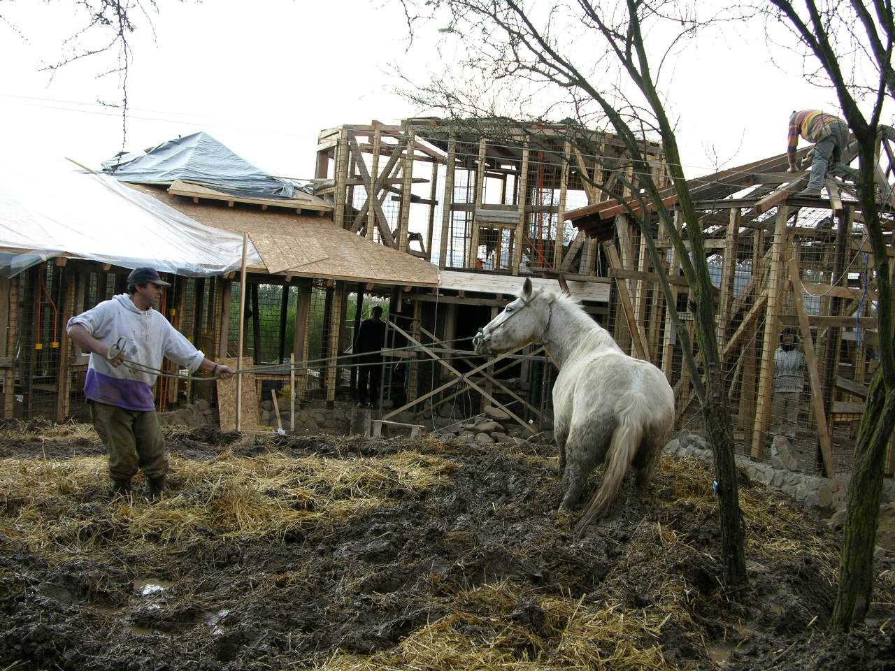 Casas de adobe..tecnica antisismica,comunidad Ecológica, Santiago,Chile