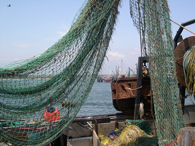 Snug Harbor Rhode Island Fishing Charters