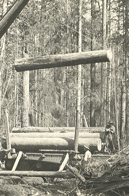 Colburn ID Possibly Sandpoint ID Logging And Lumber