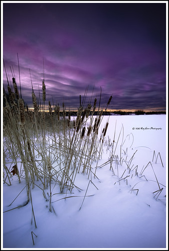 winter sunset snow ice minnesota snowshoe frozenlake cottontails d700
