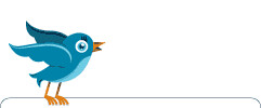 Twitter Bird Animation