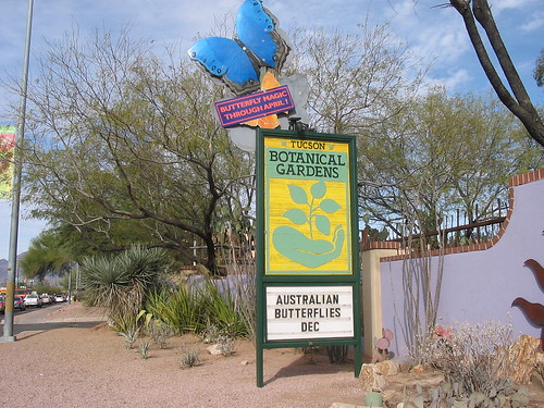 Day4_TucsonBotanicalGardens