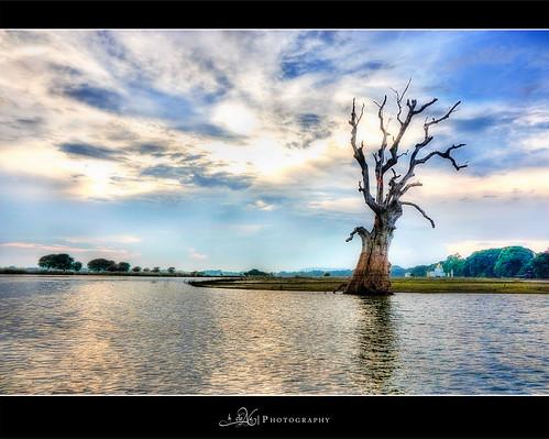 lake tree clouds canon asia southeastasia bluesky myanmar hdr asean southasia photomatix tonemapped