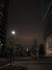 Tokyo Reflection Glow