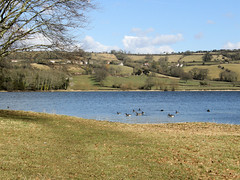 Blagdon Lake, Somerset