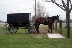 amish(0.0), coachman(0.0), cart(0.0), vehicle(1.0), transport(1.0), horse harness(1.0), horse and buggy(1.0), land vehicle(1.0), carriage(1.0),