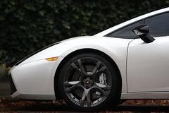 Lamborghini Gallardo SE by FlorisPF
