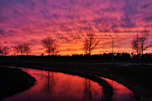 light sunset sun reflection tree water clouds nikon view thomas air lightning nikkor vr 18105 d90 rooij thomasvanrooij