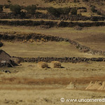 Rural Peru Near Lake Titicaca - Puno, Peru to Copacabana, Bolivia