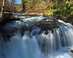 Luckiamute Falls