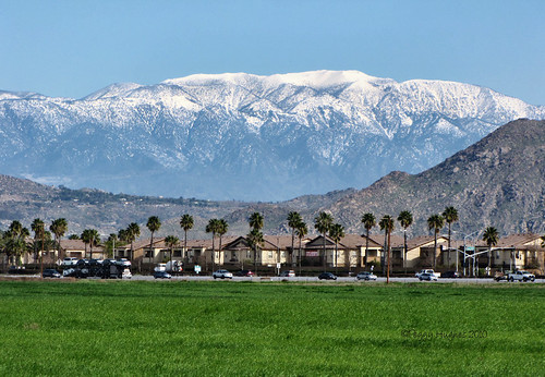 california fab mountains view palmtrees freeway southerncalifornia peggy allrightsreserved emptyfield snowcoveredpeaks blueribbonwinner omot ilovemypics ©peggyhughes2010