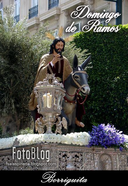 Almería, Semana Santa 2010. Cofradías del Domingo de Ramos.