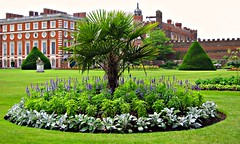 Formal Gardens at Hampton Court Palace