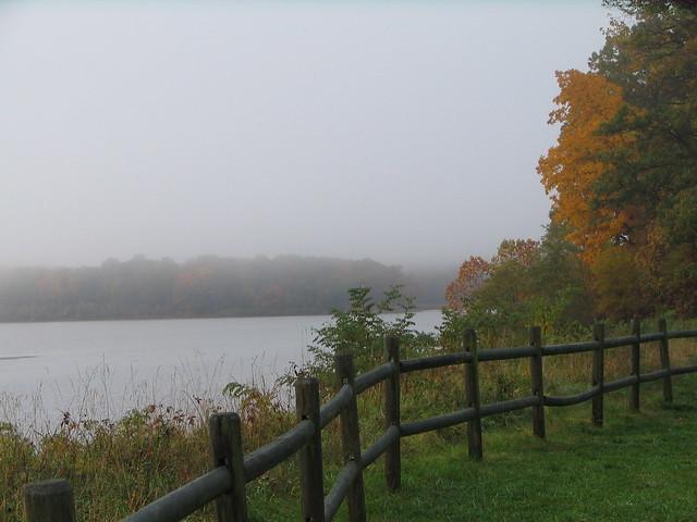 Fog on Belmont Bay at Mason Neck State Park