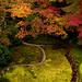 Moss garden - Kyoto by takay